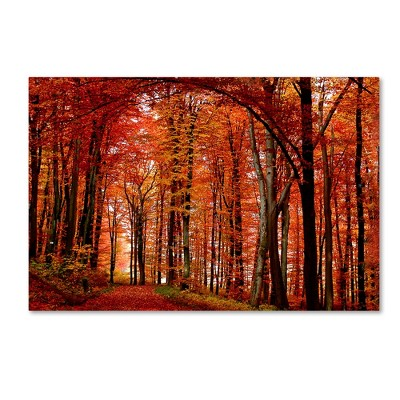 "Trademark Global Philippe Sainte-Laudy 'The Red Way' Canvas Art - 22"" x 32"""